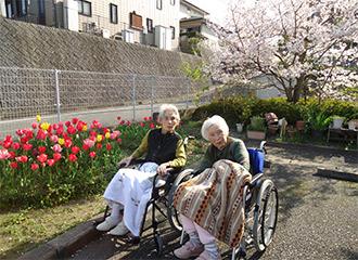 桜とチューリップ♪